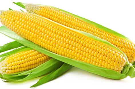 sweetcorn-seeds